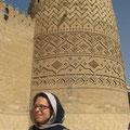 vor den wachtürmen von shiraz