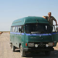 kamele kreuzen unseren weg