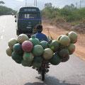 eimerverkäufer versucht dem hanomag zu folgen, indien