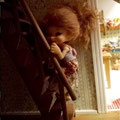 Лестница в кукольный дом.