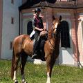 Die Herkunft verpflichtet :-) Das Einsiedler Pferd vor dem Benediktinerkloster Fischingen