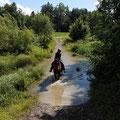 Letzthin haben Spaziergänger gemeint, der kleine braune Tupfer im Wasser sei ein Biber. Möglich wärs :-)