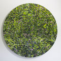Bläuling im Rotklee, Oil on Aluminumbowl, D90cm
