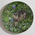 Feldhase / Hare, Oil on Aluminumbowl, D44cm