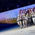 """Die Pressekonferenz der EQUITANA gab einen Einblick in die Hop-Top-Show """"Festivallo"""". Hier die Fjordpferde der IGF!"""