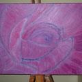 34 Pink Rose     Acryl/Keilrahmen 50x40     45 €