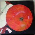 41 Äpfel – rot     Acryl/Keilrahmen 40x40     65 €