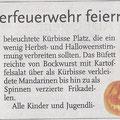 Zeitungsartikel aus dem Anzeiger der Hannoverschen Allgemeinen Zeitung vom 07.11.15