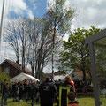 Der Maibaum ist aufgerichtet