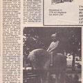 1989 06 03 Ponypark Directeur onthuld pony met kind.