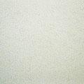 Rainbow rice_60.6×72.7cm_鳥の子紙、パール顔料_2012