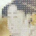 323円の女_45.5×38.0cm_麻紙 金属箔 鉛筆 一円硬貨/フロッタージュ_2017