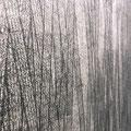 どこへ行く-竹林図的図-_180.0×582.0cm_鳥の子紙 墨 インク 鉛筆_2011