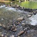 川をせき止め、新たな川づくり