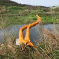 河川汚濁防止フェンス工事