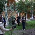 Посланието в бутилката, което заровихме в корените на маслиновото дръвче