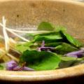 比良山荘の「月鍋」お鍋の中は、くまとかたくりの花。美味しそうです。
