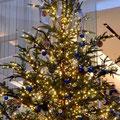 阪急西宮ガーデンズのクリスマスツリー。