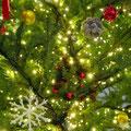 阪急西宮ガーデンズのツリーの飾りつけ。