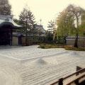 高台寺方丈前のお庭。春には枝垂桜が美しい花をつけるお庭です。