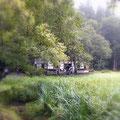 「高村山荘」の全景。大自然の中の小さな家です。