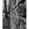 "N° 0011 SW   ""Mauer im Kurpark-Hamm"""