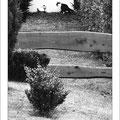 """N° 0043 SW   """"Revierkampf von zwei Katzen in Medebach"""""""