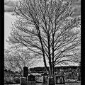 """N° 0052 SW   """"Jüdischer Friedhof in Medebach"""""""