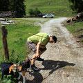 oh je brücken geht nicht so einfach, aber da ist strom drauf!!!!!!!