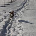 Emma im Schnee
