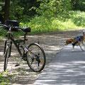Emma mag lieber ohne Rad los laufen
