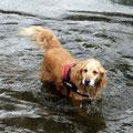 Cira schaut schonmal wie kalt das Wasser ist