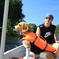 hauptsache der beagle sitzt bequem