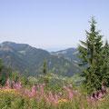 Blick vom Unternberg