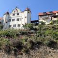 Das Schloss in Gochsheim - Foto Ingo Pedal