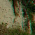 Steile Lösswand mit Abbrüchen