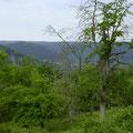 Auf dem Dilsberg liegt Neckargemünd in der Ferne