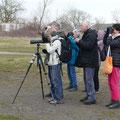 Vogelbeobachter - Foto von Wolfgang S.