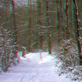 """Sonne und Schnee bei den """"Drei Eichen"""""""