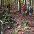 Gipfelstürmer am Katzenbuckel - I. Pedal