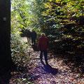 Auf einem Teilstück des Neckarsteigs - Foto PeWe
