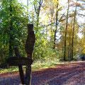 via naturae - ein Walderlebnispfad - Foto PeWe