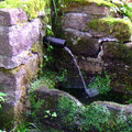 ...am plätschernden Brunnen  (pewe)