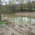 Der neue Teich fügt sich gut in das Gelände ein