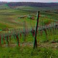 Die sanften Hügel im Kraichgau