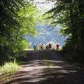 Auf dem Rückweg  (Bild: Ingo Pedal)