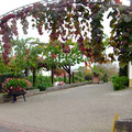 Ein schmucker Hofplatz  - Foto P. Welker