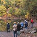 """Der """"Kratersee"""" ist eine Steinbruch-Grube - I. Pedal"""
