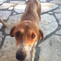 Sophie in Montenegro