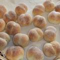 焼き上がり いつものパン